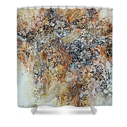 Shower Curtain featuring the painting Decomposition  by Joanne Smoley