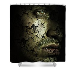 Decomposition Shower Curtain