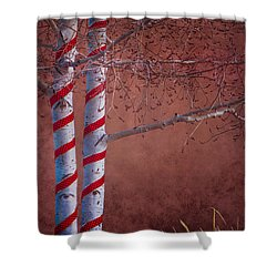 Decorated Aspens Shower Curtain