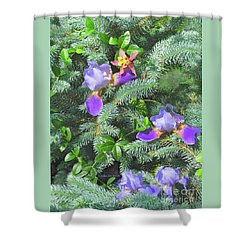 Shower Curtain featuring the photograph Decorating For Spring by Nancy Lee Moran