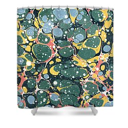 Decorative Endpaper Shower Curtain