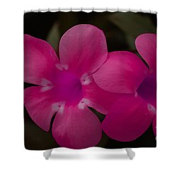 Shower Curtain featuring the photograph Decorative Floral A62917 by Mas Art Studio