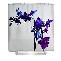 Shower Curtain featuring the photograph Decorative Orchid Photo A6517 by Mas Art Studio