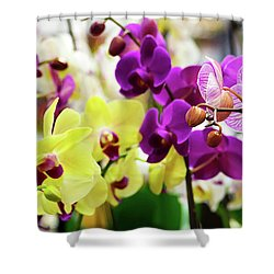 Shower Curtain featuring the photograph Decorative Orchids Still Life C82418 by Mas Art Studio
