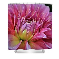 Decorative Pink Dahlia Shower Curtain by Patricia Strand