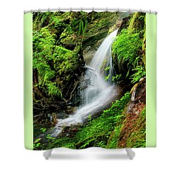 Deep Forest Falls Shower Curtain by Greg Sigrist