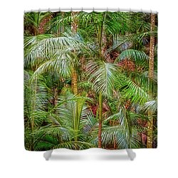 Deep In The Forest, Tamborine Mountain Shower Curtain