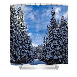 Deep In The Snowy Forest Shower Curtain by Lynn Hopwood