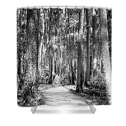 Deep In The Woods  Shower Curtain by Phill Doherty