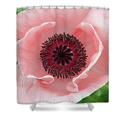 Deep Pink Shower Curtain