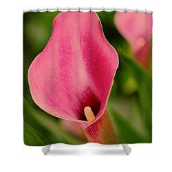 Deep Pink Shower Curtain by Kathleen Struckle