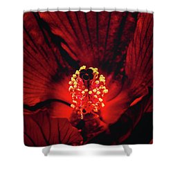 Deep Red Shower Curtain by Jae Mishra