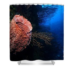 Deep Reef Shower Curtain