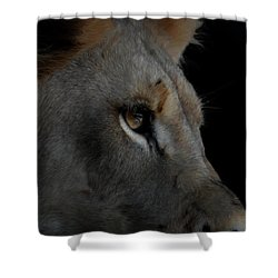 Shower Curtain featuring the digital art Deep Thought by Ernie Echols