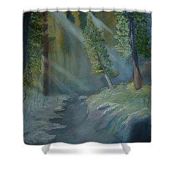 Deep Woods Dry Gulch Shower Curtain