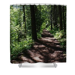 Shower Curtain featuring the photograph Deep Woods Road by Ben Upham III