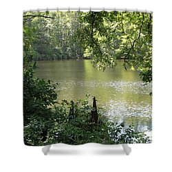 Shower Curtain featuring the photograph Deepwood Retreat by John Glass