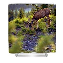 Deer At Crater Lake, Oregon Shower Curtain