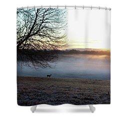 Deer At Dawn Shower Curtain
