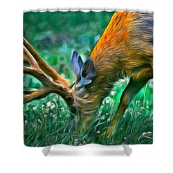 Deer At Lunch - Pa Shower Curtain