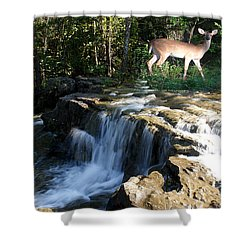 Deer At The Falls Shower Curtain by Rick Friedle