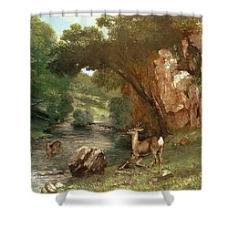 Deer By A River Shower Curtain by Gustave Courbet