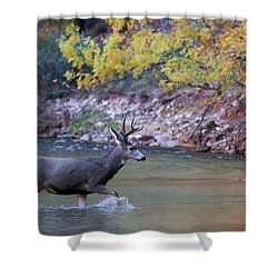 Deer Crossing River Shower Curtain