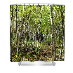 Deer Hide Shower Curtain