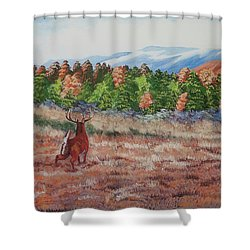 Deer In Fall Shower Curtain by Charlotte Blanchard