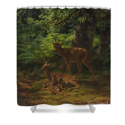 Deer In Repose Shower Curtain by Rosa Bonheur