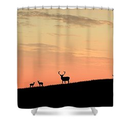 Deer In Silhouette Shower Curtain by John Wills