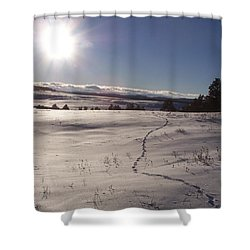 Deer Tracks Shower Curtain
