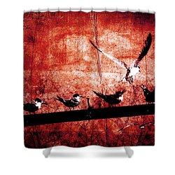 Defiance Shower Curtain by Andrew Paranavitana