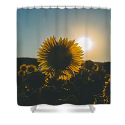 Definition Of Summer Shower Curtain