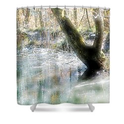 Degenried Switzerland Shower Curtain