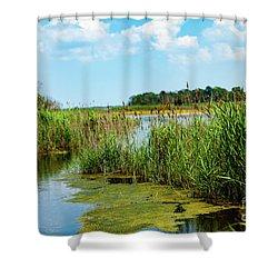 Delaware Marsh Shower Curtain