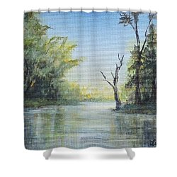 Delaware River  Shower Curtain