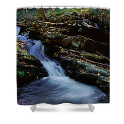 Delaware Water Gap 020 Shower Curtain by Scott McAllister