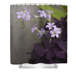 Delicate And Dark Shower Curtain by Morris  McClung