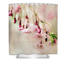 Shower Curtain featuring the photograph Delicate Bloom by Jessica Jenney