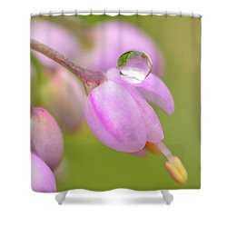 Delicate Drop Shower Curtain