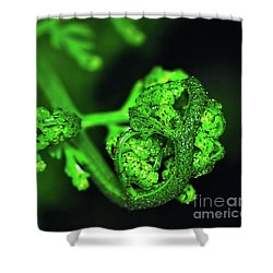 Delicate Fern Unfolding Shower Curtain by Kaye Menner