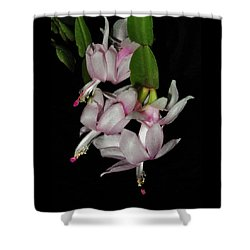 Delicate Floral Dance Shower Curtain