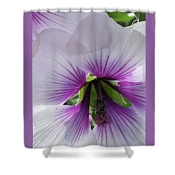 Delicate Flower 2 Shower Curtain