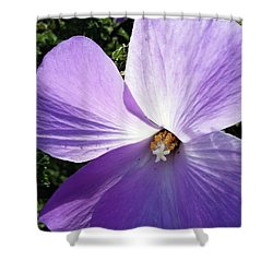Delicate Flower Shower Curtain