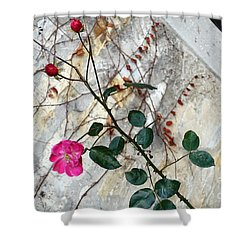 Delicate Rose In December Shower Curtain