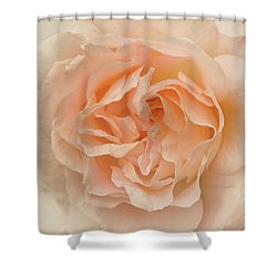Delicate Rose Shower Curtain by Jacqi Elmslie