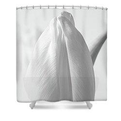 Delicate Tulip Shower Curtain
