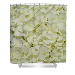 Shower Curtain featuring the photograph Delicate White Hydrangea  by Lyle Crump