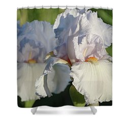 Shower Curtain featuring the photograph Delicate White Iris by Rebecca Overton